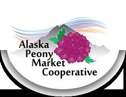 Wholesale Peonies | Alaska Peony Market | Summer Peonies